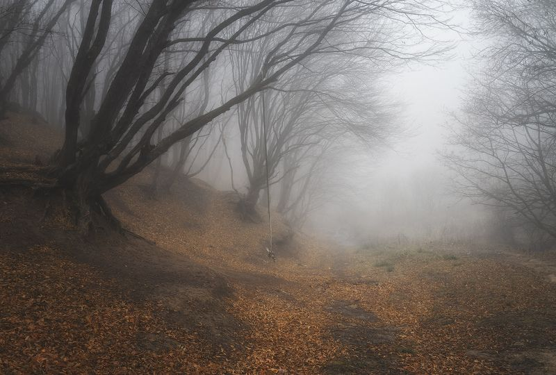 пейзаж,природа Воспоминания об ушедшемphoto preview