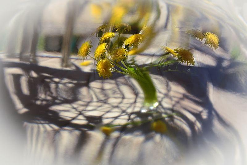 Весеннее головокружениеphoto preview