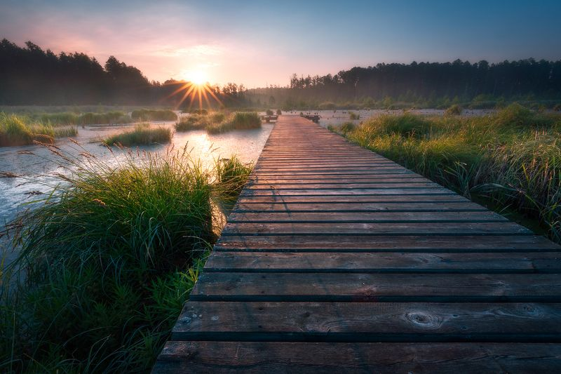 poland podlasie sky clouds woods sunrise trees outdoor spring jetty mist fog There is a path to everything...photo preview