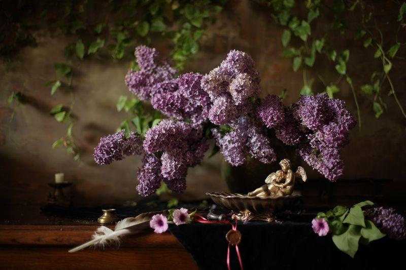 цветы, сирень, натюрморт, свет, весна Натюрморт с букетом сирениphoto preview