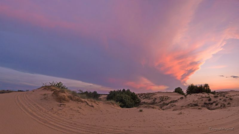 вечер, июнь, закат, небо, облака Закатная круговертьphoto preview