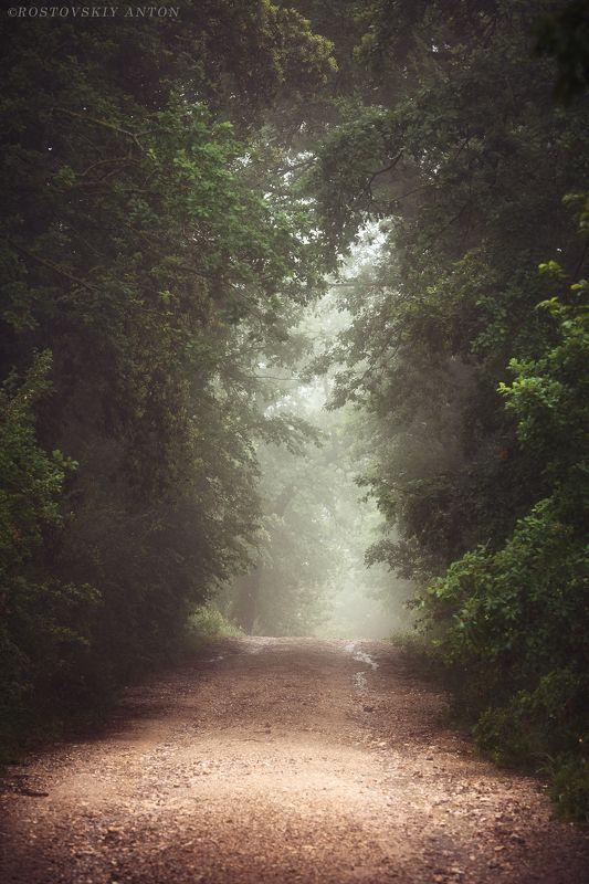 Тоскана, Италия, Фототур, утро, туман, Туманно утроphoto preview