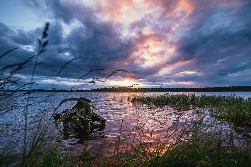 закат, облака, вечер, берег ###photo preview