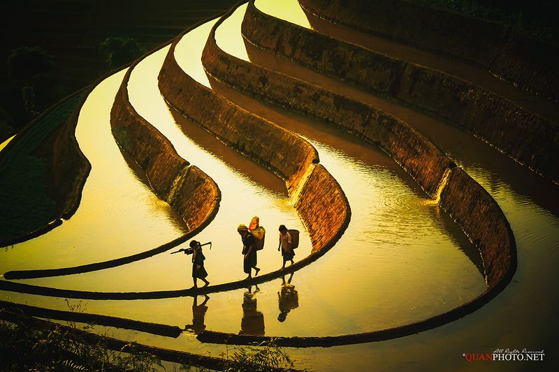 quanphoto, landscape, sunlight, water, people, ethnic, reflections, farming, farmland, agriculture, farmers, terraces, shadow, mucangchai, yenbai, vietnam The shadowphoto preview