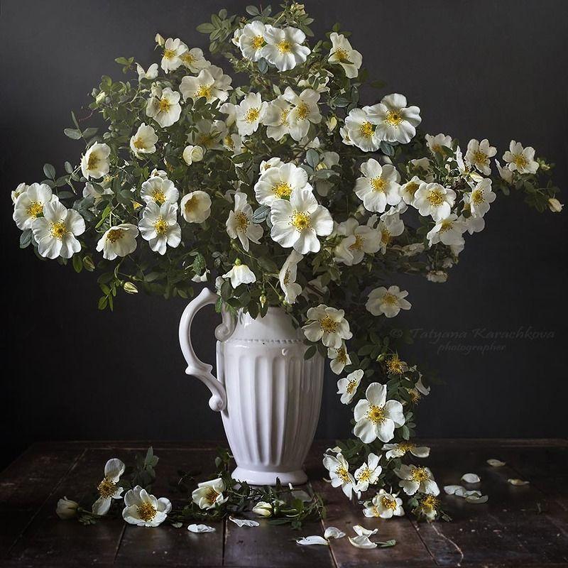 букет, шиповник, ваза, шар, цветы Букет из веток белого шиповникаphoto preview