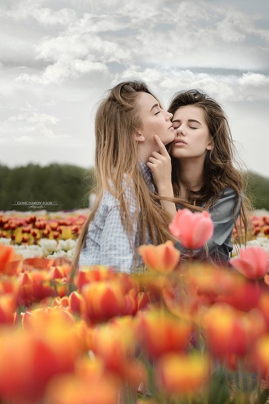 Tulipsphoto preview