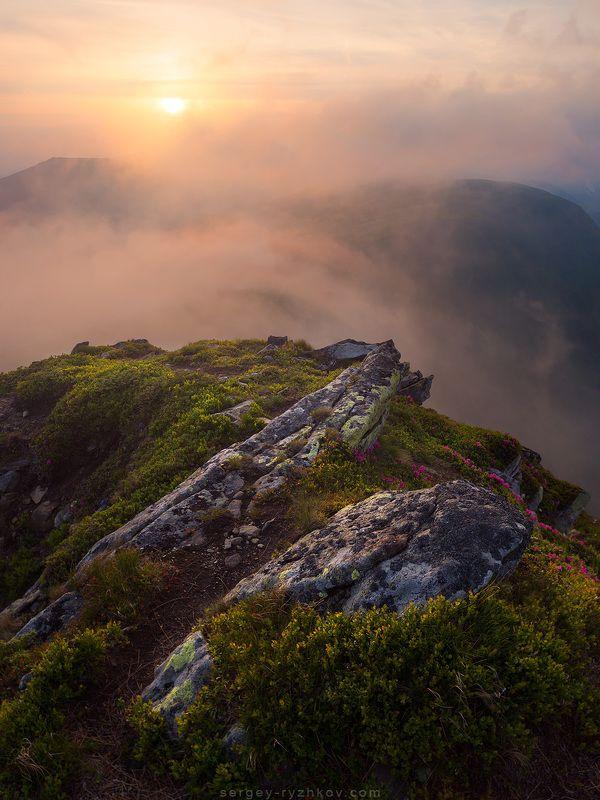 Карпаты, Украина, природа, горы, пейзаж, туман, landscape, nature, carpathians, ukraine, mountains, ***photo preview