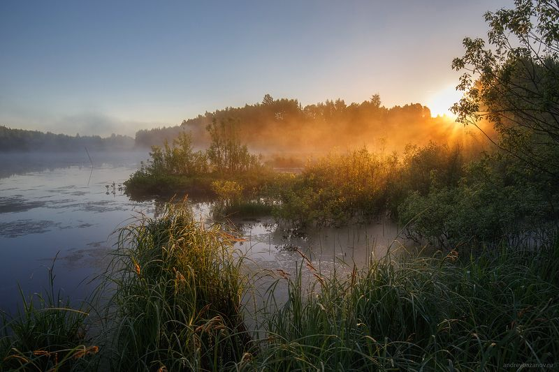 Утренняя тишинаphoto preview