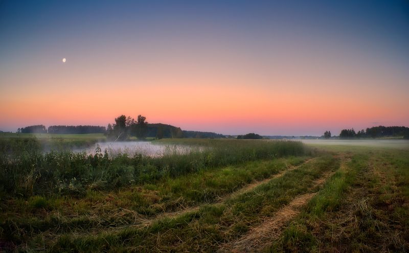 рассвет, лето, река, луна, Дорога у рекиphoto preview
