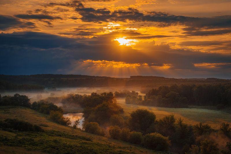 фото, природа, пейзаж, рассвет, туман, лес Луч солнца золотогоphoto preview