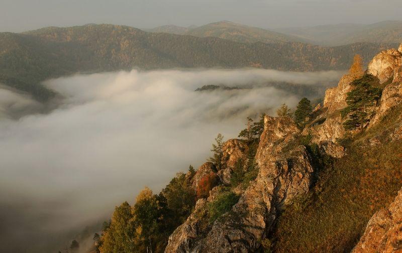 торгашинский хребет. склон. туман. Солнечный склон.photo preview