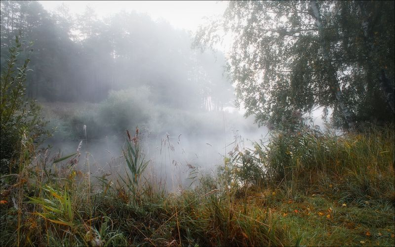 утро, река, осень, дымка, Осенний этюдphoto preview