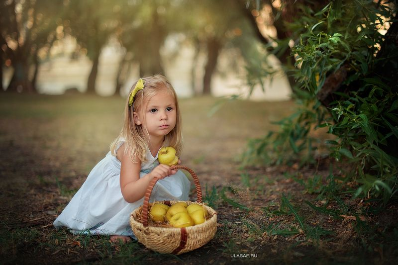 портрет, лето, девочка, girl, summer, яблоки, корзинка, apple Амелияphoto preview