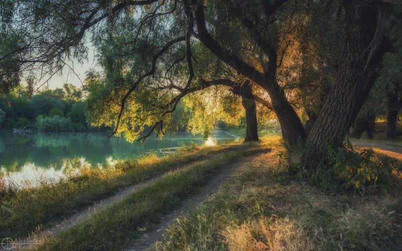 На восходе у реки...photo preview