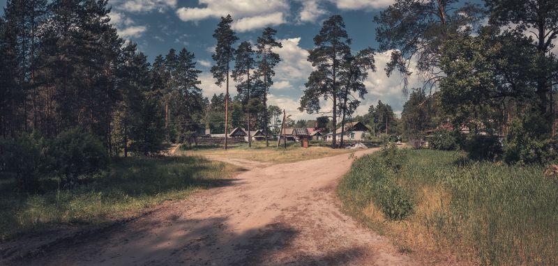 панорама, лето, лес, деревня ***photo preview