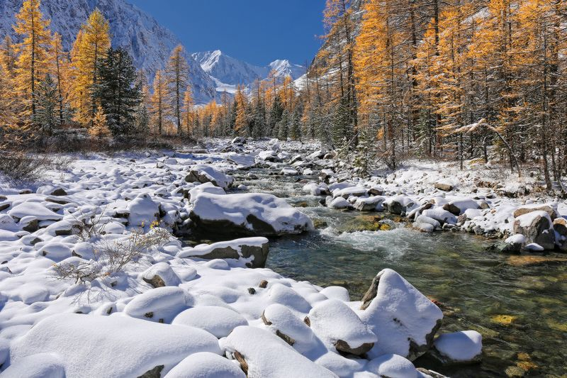 алтай, горный алтай, северо-чуйский хребет, актру, первый снег Актруphoto preview