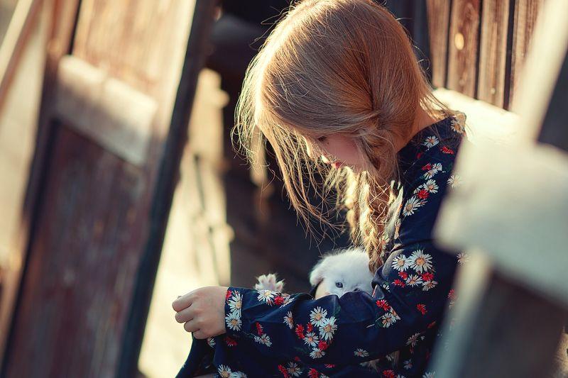 девочка портрет котенок Домой...photo preview
