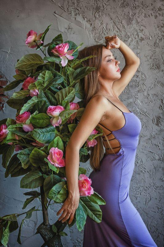 студия, девушка, модель, гламур, портрет Фиолетphoto preview
