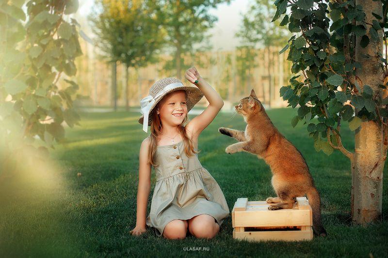 портрет, лето, девочка, girl, summer, кошка, cat, улыбка, радость, игра, веселье, счастье,happy, happiness Поиграем?!photo preview