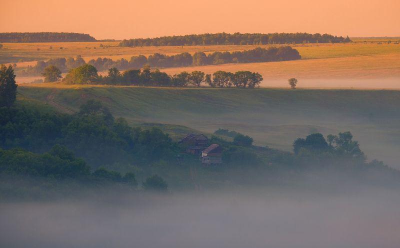 утро, рассвет, лето, туман, лес Немного утренней сказкиphoto preview