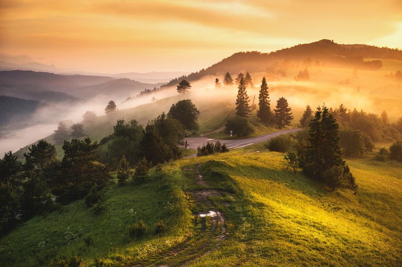 fog, mist, slovakia, sunset, закат, storm, clouds, sky, golden hour, mountains, landscape, пейзаж, туман, Embraced by fogphoto preview
