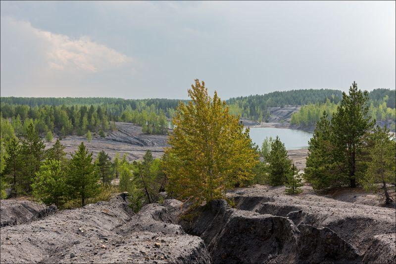 Май в краю лесных прудовphoto preview