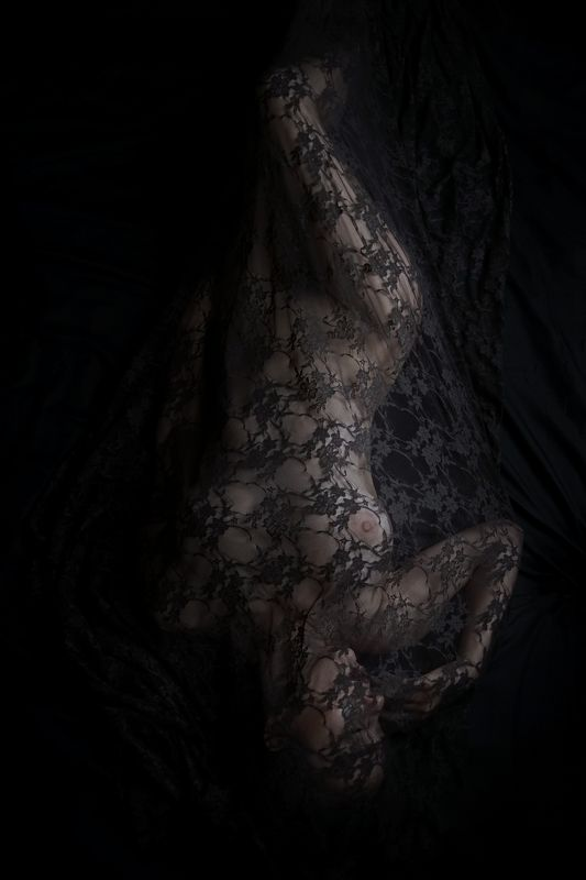 black, lace, fine-art, nude, veil photo preview