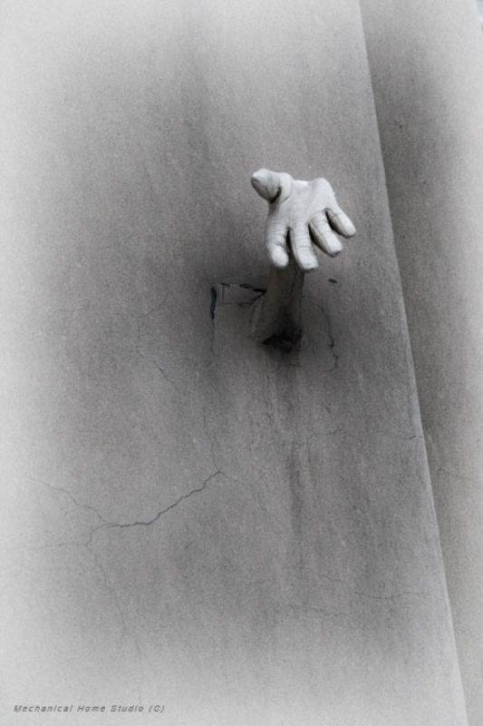 руки, фасады ладони домовphoto preview