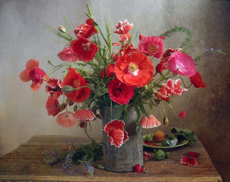 натюрморт, цветы, марина филатова, маки В июне маки зацвелиphoto preview