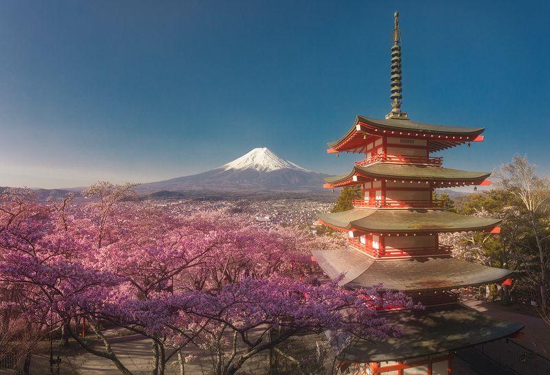Япония, Фудзи, сакура, пагода, пейзаж Вид на Священную Фудзиphoto preview