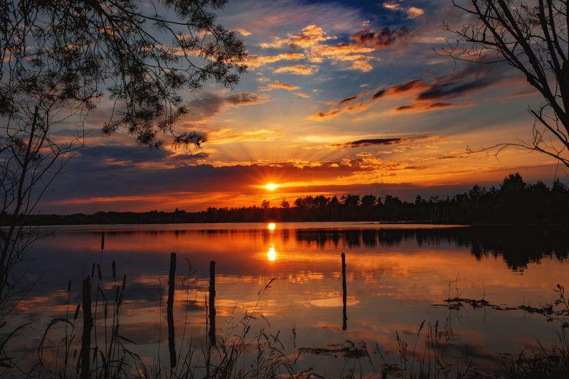 закат, пейзаж, озеро, лес, лето Доброй ночи, друзья)photo preview