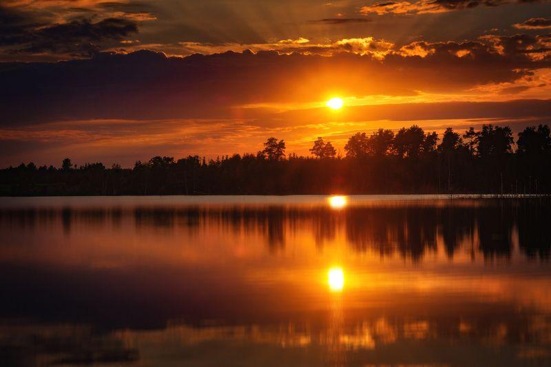 фото, природа, пейзаж, лес, лето, закат Жидкое золото закатаphoto preview