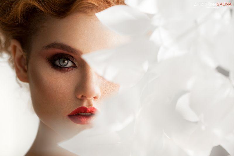 девушка, лицо, портрет, визаж, красивая, глаза, цвет, красная, помада, жижикина, взгляд,  Спрятавшисьphoto preview