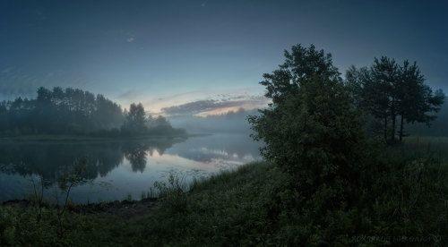 волшебство туманной ночи...