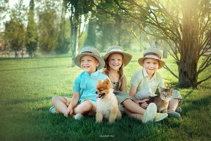 портрет, лето, девочка, girl, summer, кошка, cat, мальчики, boys, братья, улыбка, сестра, животные, собака, щенок, друзья, радость, игра, веселье, счастье, happy, happiness Друзьяphoto preview