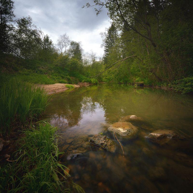 лес, природа, пейзаж, лето, река, вода, камни, течение, выдержка, ручей, подмосковье, вечер На рекеphoto preview