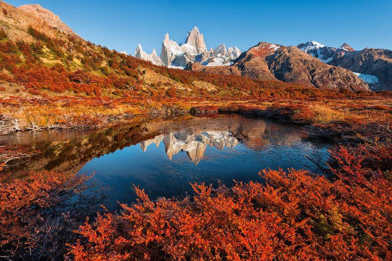 пейзаж отражение патагония аргентина путешествие туризм трэвел фитц рой Осеннее отражениеphoto preview