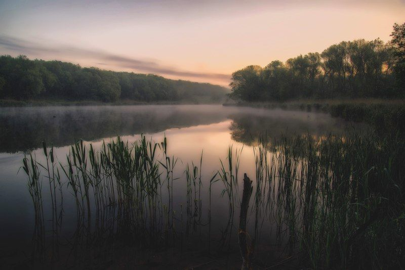 природа пейзаж рассвет дымка fog sunset sautumn nature landscape Доброе утро.photo preview