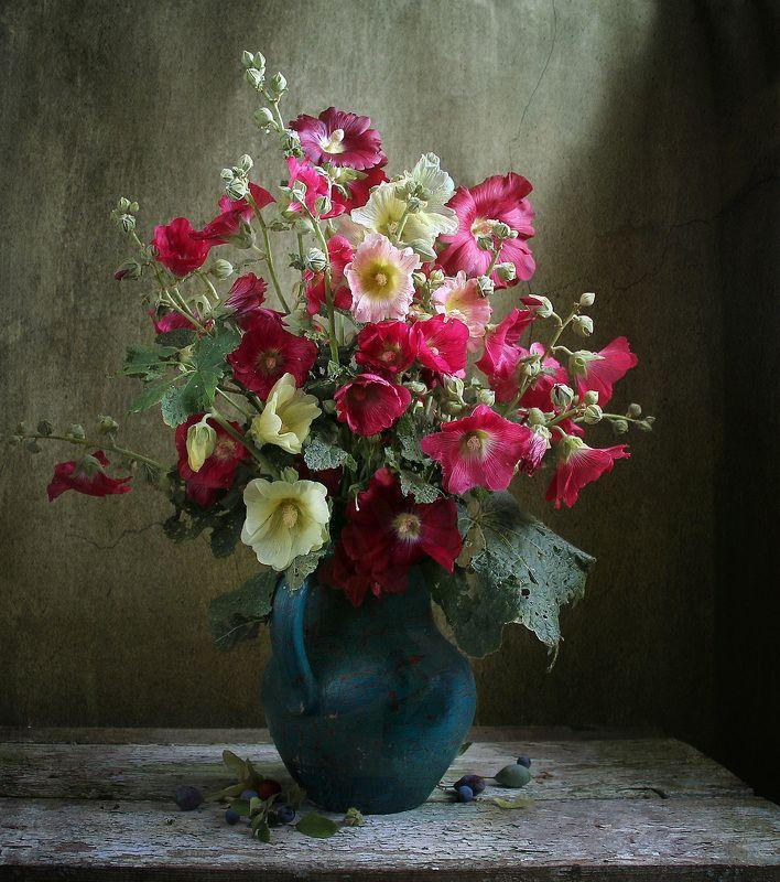 натюрморт, цветы, марина филатова, лето, мальвы С детства мальва, помнится мнеphoto preview