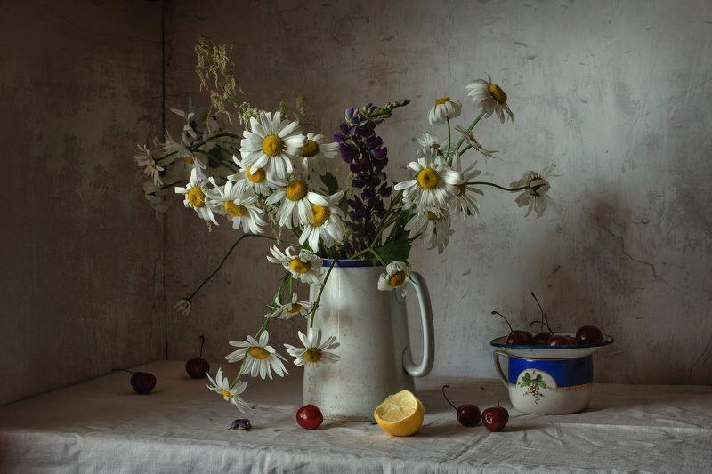 натюрморт, фарфор, цветы, ромашки, ягода, черешня, кот Ромашково-черешневыйphoto preview