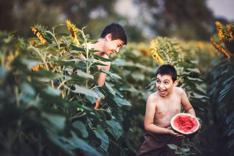 Дети, подсолнух, арбуз, радость , смех, детская фотосессия,лето,счастливый момент Счастливое детствоphoto preview