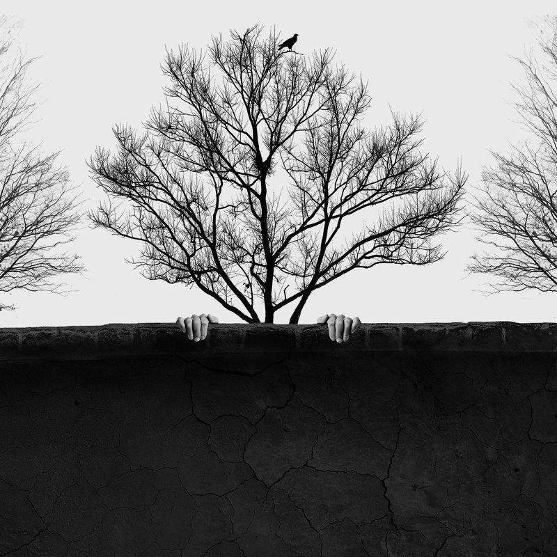 #35photo #surrealart#photoshop#ps_fantasy#art_minimal #bnw_dream #photography#minimalism#conceptual#fineart #instagram#ps_dreams#bnwminimalismmag#art_digital # free_association#harfeaks#ir_photographer#ir_aks#instapersia #minimal#canon#blackandwhite#bnw#s Wallphoto preview