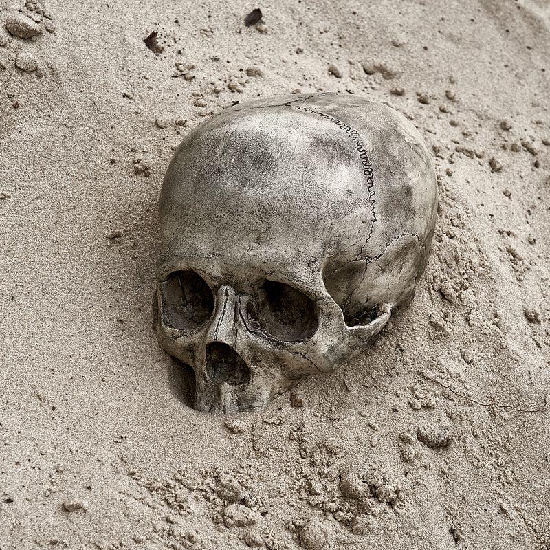 череп песок пустыня Череп в пескеphoto preview