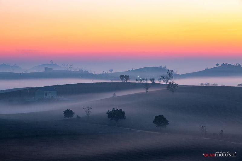 quanphoto, landscape, nature, long_exposure, sunrise, dawn, hill, tea, plantation, mist, misty, highland, plateau, vietnam Morning Mistphoto preview