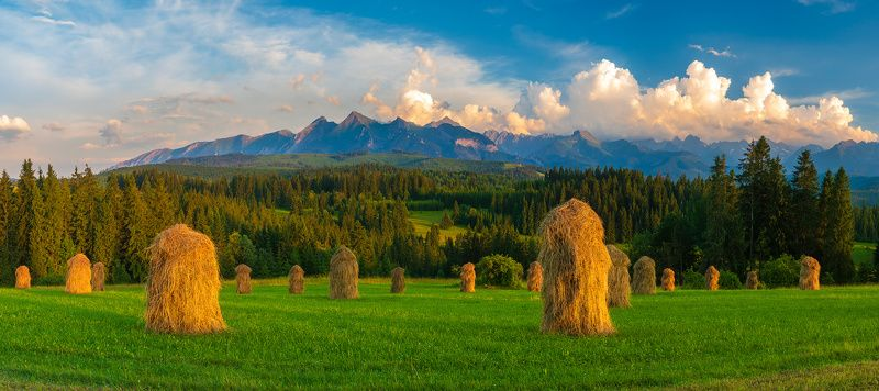 haymaking in the Tatrasphoto preview