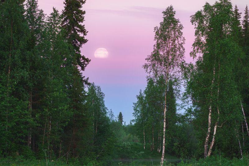 Белая ночь севераphoto preview