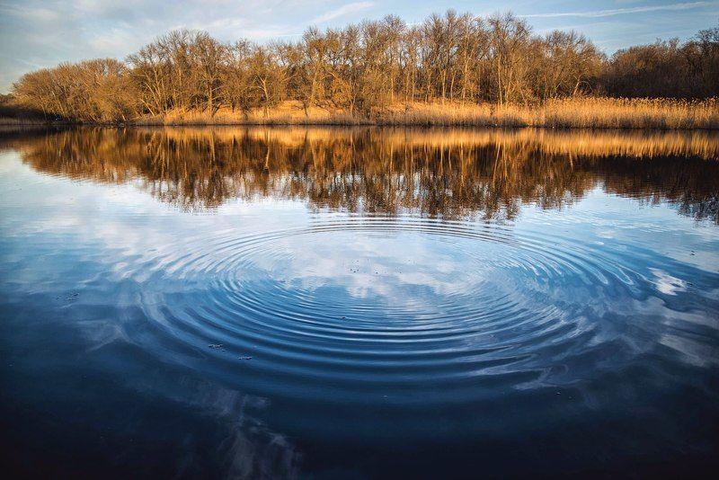 пруд осень природа пейзаж pond autumn nature landscape Осенний пруд.photo preview