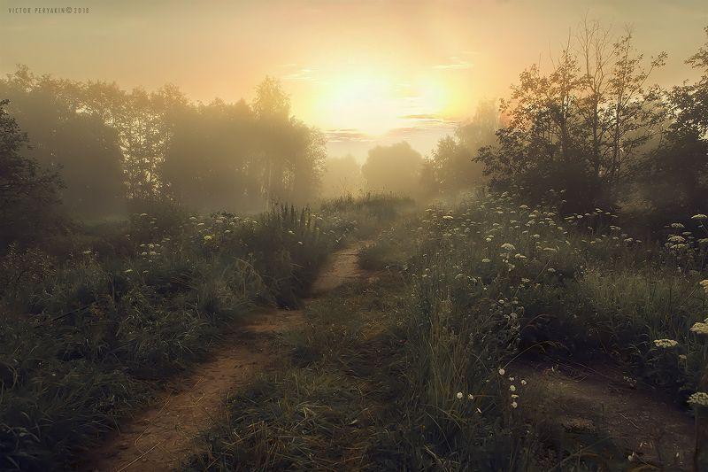 Ты помнишь  июльское утро?photo preview