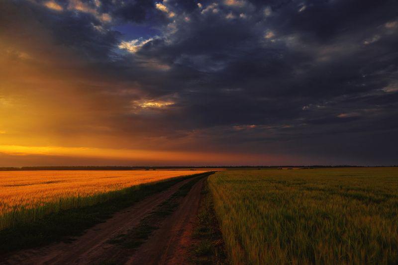 гроза, поле, закат, лето Там, где встречается тьма и светphoto preview