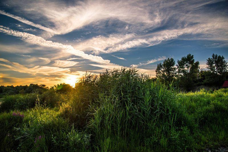 вешенская закат россия  природа пейзаж sunset sunlight nature landscape лес forest fog дымка Вешенские закаты.photo preview